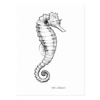 De Zwart-witte Tekening van Seahorse Briefkaart