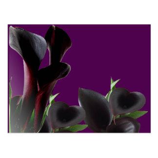 De zwarte Calla Bloemen van de Lelie Briefkaart