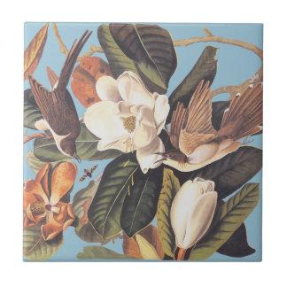 De Zwarte Gefactureerde Koekoek van Audubon Keramisch Tegeltje