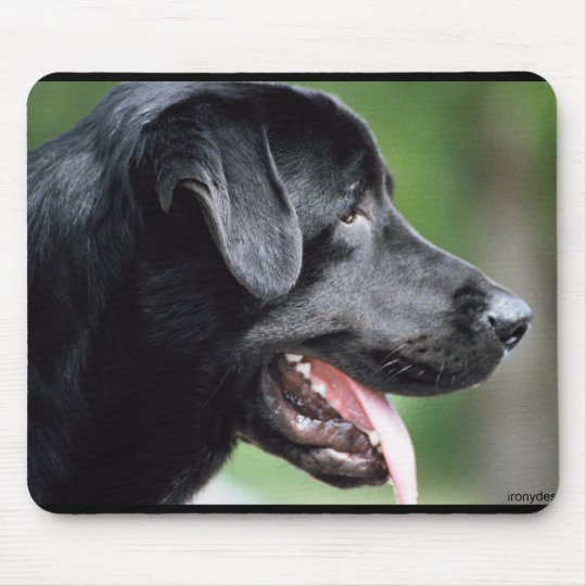de zwarte hond van de labrador muismat. Black Bedroom Furniture Sets. Home Design Ideas