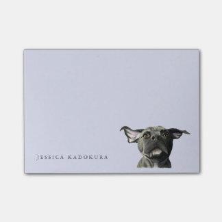 De zwarte Hond van de Stier van de Kuil met Wiggly Post-it® Notes