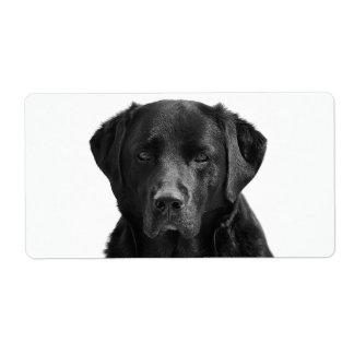 De zwarte Hond van het Puppy van de Labrador Etiket