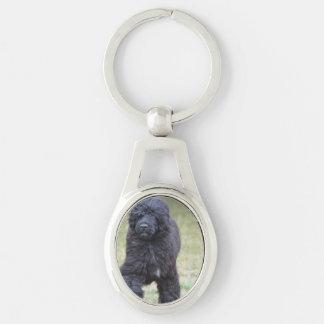 De zwarte Portugese Hond van het Water Zilverkleurig Ovalen Sleutelhanger