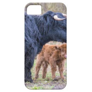 De zwarte Schotse koe van de Hooglandermoeder met Barely There iPhone 5 Hoesje