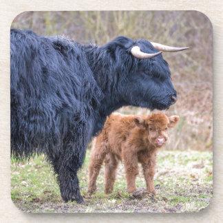 De zwarte Schotse koe van de Hooglandermoeder met Bier Onderzetters