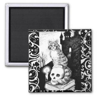 De zwarte & Witte magneet van de het katjesschedel