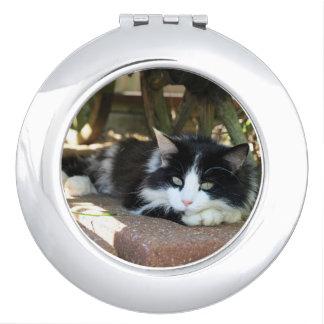 De zwarte & Witte Spiegel van de Kat van het Kat Makeup Spiegeltjes