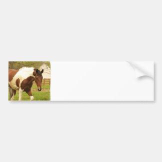 De zwervende Sticker van de Bumper van het Paard v