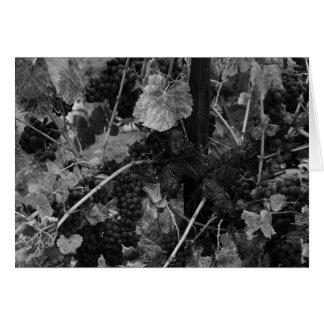 Detail van Druiven, de Wijngaard van de Handelaar Wenskaart
