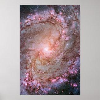 Detail van Spiraalvormige Melkweg M83 Poster