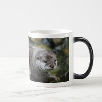 Deze Mok werd enkel Otter - grappige onthullende
