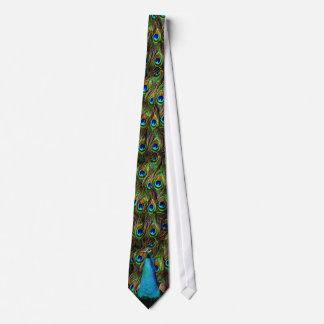 Deze pauw let op u! club stropdas