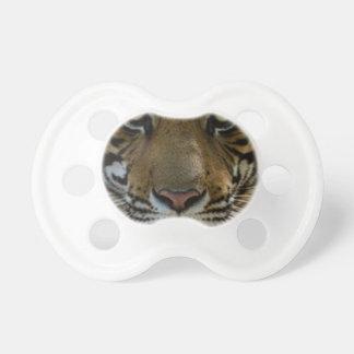 Dichte Omhooggaand van het Gezicht van de tijger Fopspeen