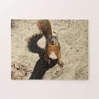 Die Gekke Eekhoorn Puzzel