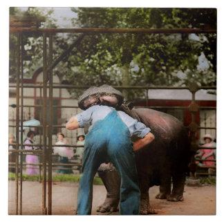 Dier - Hippo - Stomme menselijke trucs 1910 Tegeltje