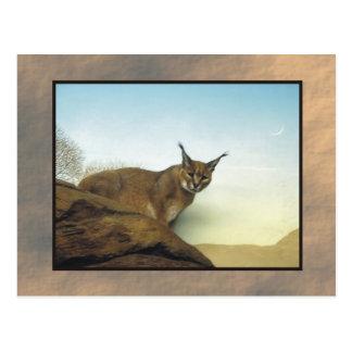 dierentuin lynx 2 briefkaart