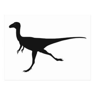 dinosaurussen wens kaarten