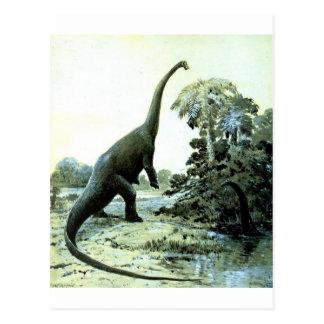 diplodocus-1 briefkaart