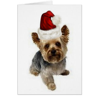 Ditzy Dogs~Original Notecard~Yorkie~Christmas Briefkaarten 0