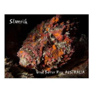 Dodelijke Stonefish op het Grote Barrièrerif Briefkaart