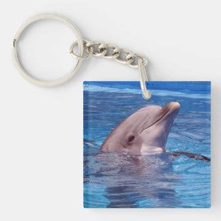 dolfijn 2-Zijde vierkante acryl sleutelhanger