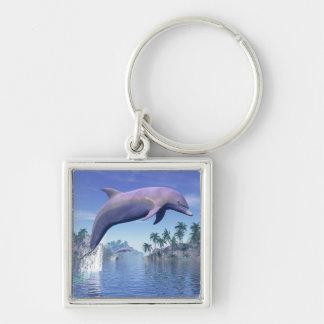 Dolfijn in de 3D keerkringen - geef terug Sleutelhanger