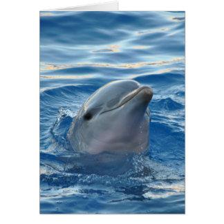 Dolfijn Notitiekaart