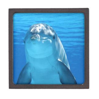 dolfijn premium juwelen doos