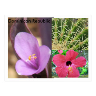 Dominicaanse Republiek Briefkaart