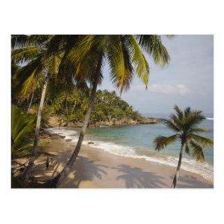 Dominicaanse Republiek, de Kust van het Noorden, Briefkaart