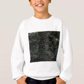 donker korstmos op rotsen trui