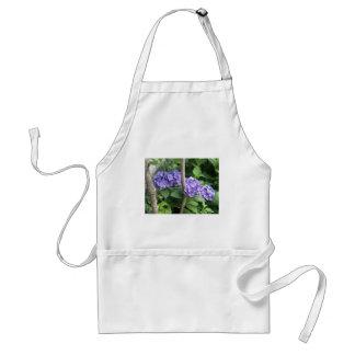 Donkerpaarse Hydrangea hortensia's Standaard Schort