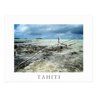 Dood hout in Tahiiti wit tekstbriefkaart Briefkaart