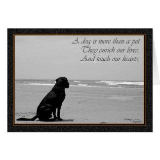 Dood van een huisdier, droevige honddood, hond die kaart