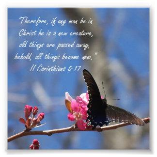 Doopsel 2 van de vlinder Corinthians de Druk van h Foto Afdruk