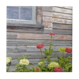 Doorstane hout en Zinnias Keramisch Tegeltje