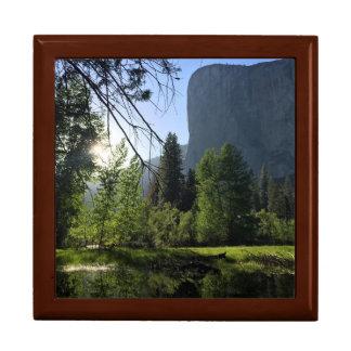 Doos van de Juwelen van het Park van Yosemite de Decoratiedoosje