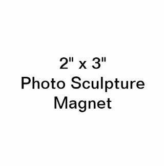 Douane 2 de Magneet van het Beeldhouwwerk van de F Fotobeeldje Magneet