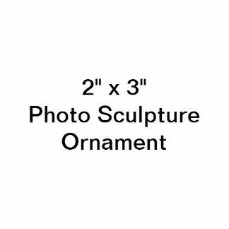 Douane 2 het Ornament van het Beeldhouwwerk van de Fotobeeldje Ornament