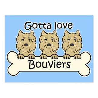 Drie Bouviers Briefkaart