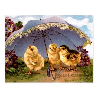 Drie de charmante Kuikens van Pasen Briefkaart