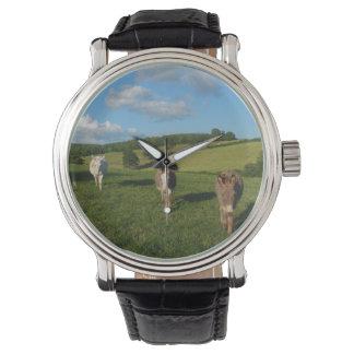 Drie Ezels op een Gebied Horloges