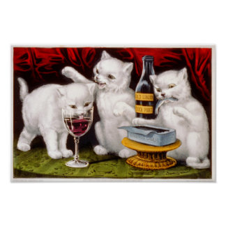 Drie heel het Poster van Katjes