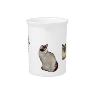 Drie Katten Pitcher