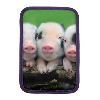Drie kleine varkens - leuk varken - drie varkens