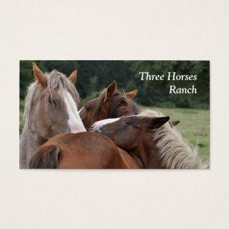 Drie paardenvisitekaartje visitekaartjes