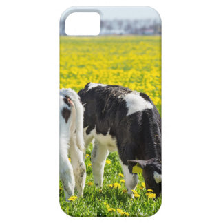 Drie pasgeboren calfs in de weide van de barely there iPhone 5 hoesje