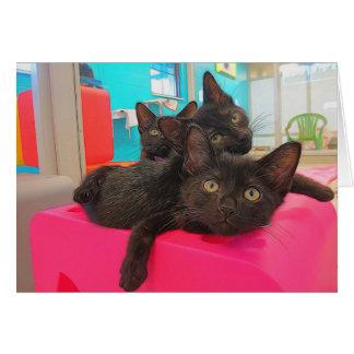 Drie Zwarte Katjes Briefkaarten 0