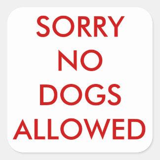 Droevig geen hondensticker vierkante sticker