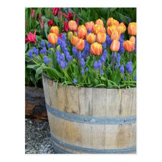 Druk van de de tulpenplanter van de lente de briefkaart